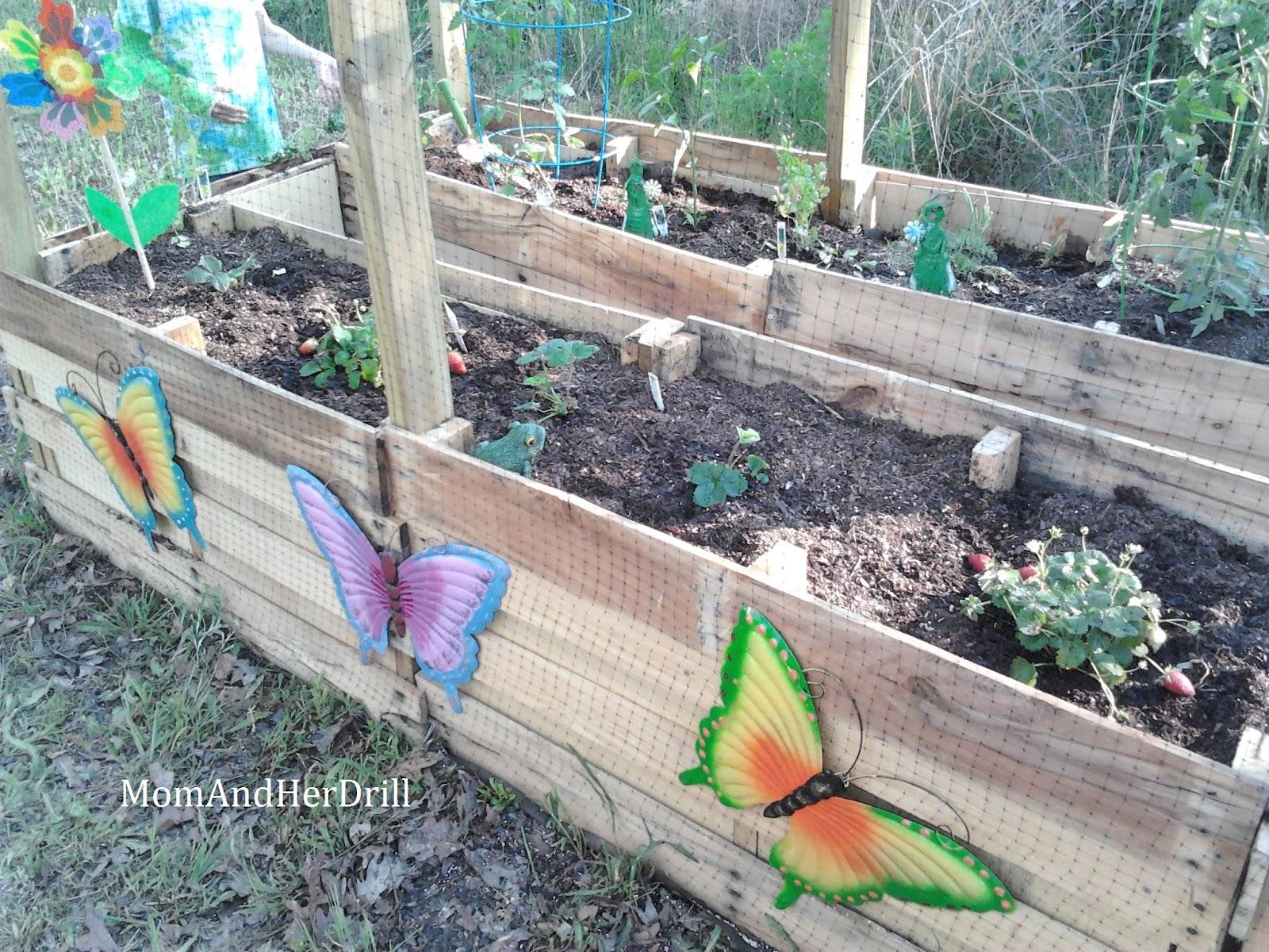 Building vegetable boxes for a greek garden california for Garden design build