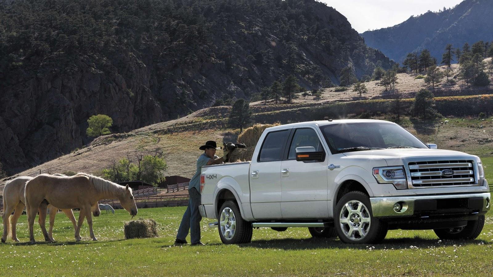 47 080 2013 Ford F 150 King Ranch 5 0 V8 360 Hp Carwp
