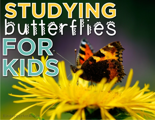 KindergartenWorks: studying butterflies for kids