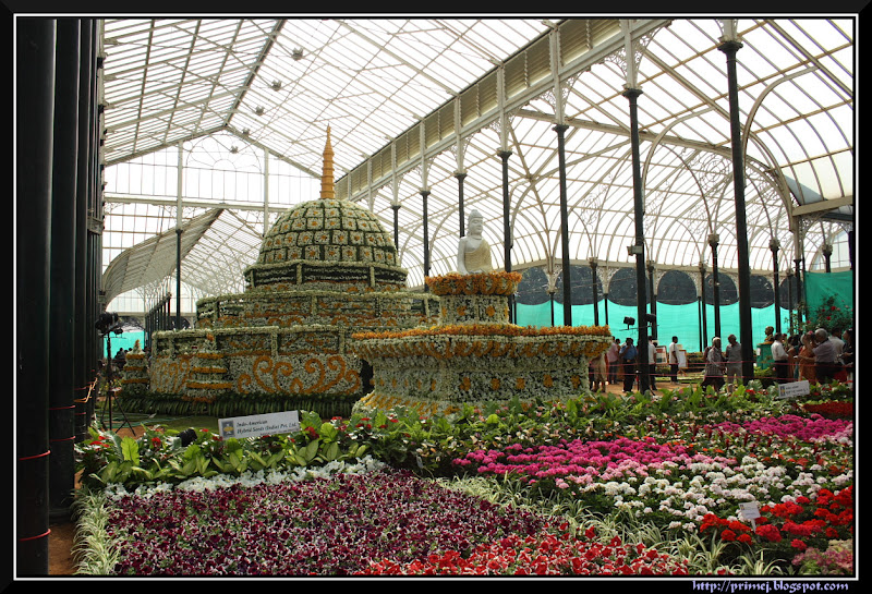 Lalbagh Flower Show January 2012