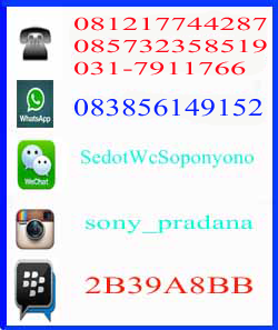 Contact Person Kami