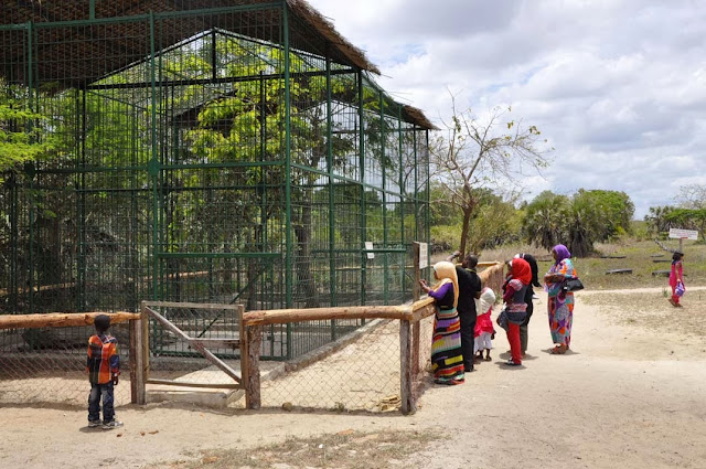 ShereheYetu Dar Es Salaam Zoo
