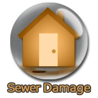 Sewer Back Up Repairs
