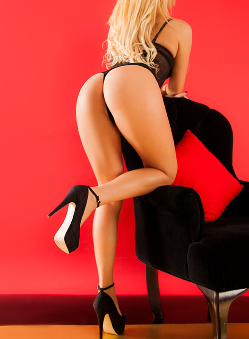 Escort Luxo Laura Sampaio
