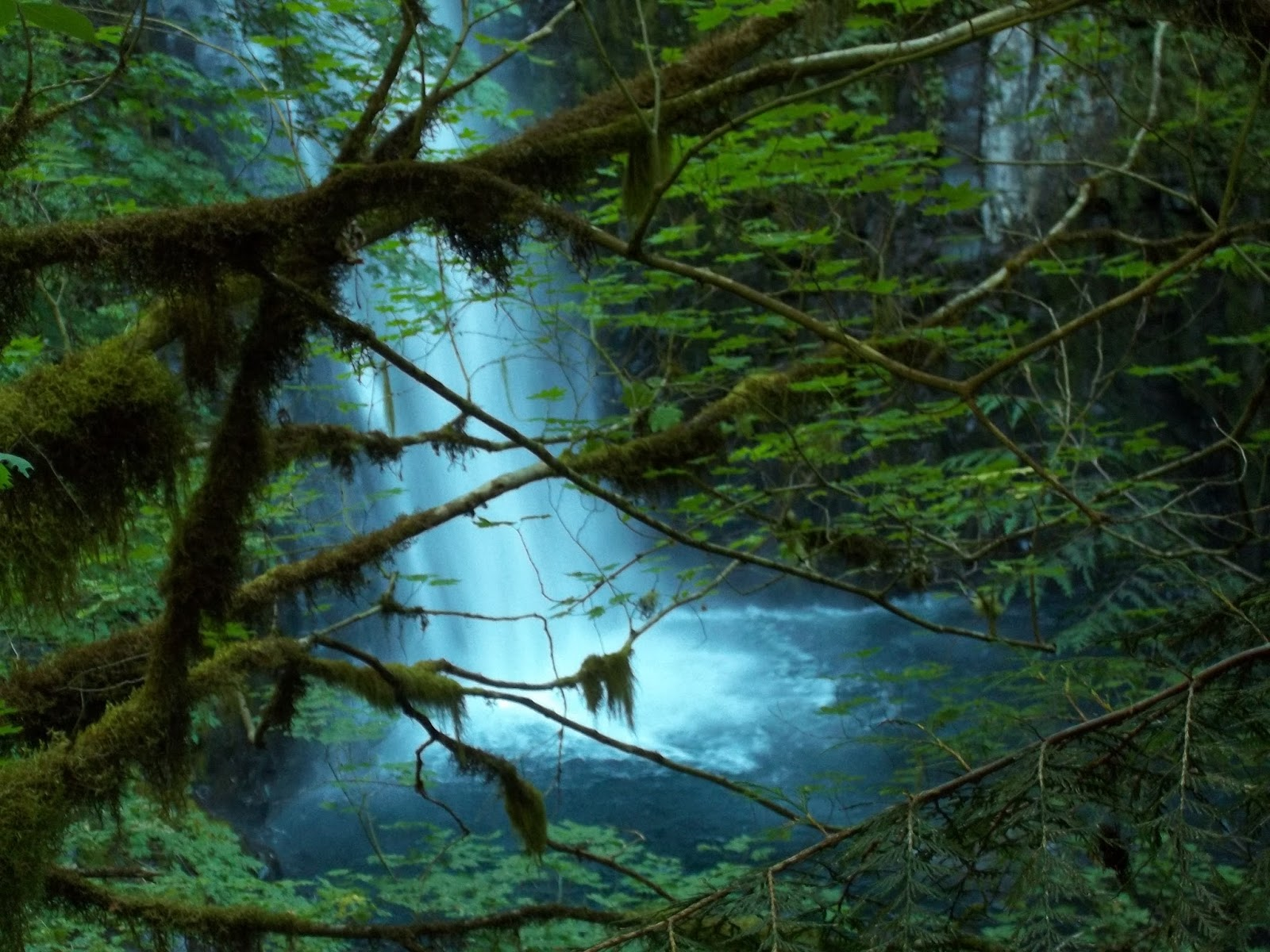 Casing Oregon: Eagle Creek Trail Without the Crowds