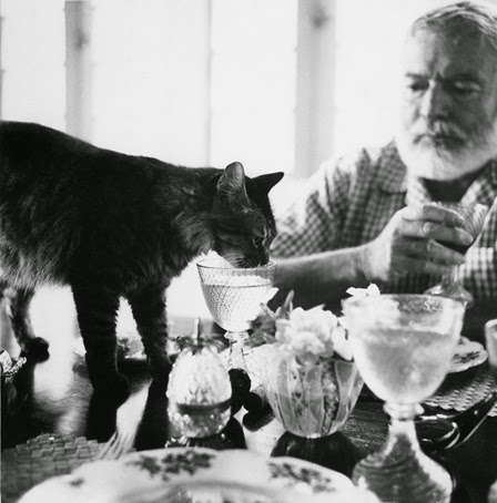 Ernest Hemingway and his cat Cristobal drink at the table at Finca Vigia.