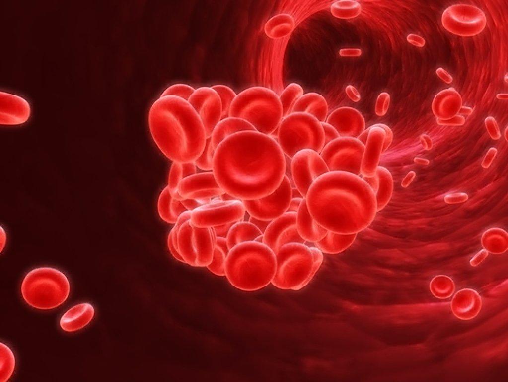 Fisiología: Tema 3. La sangre: Funciones. Composición.