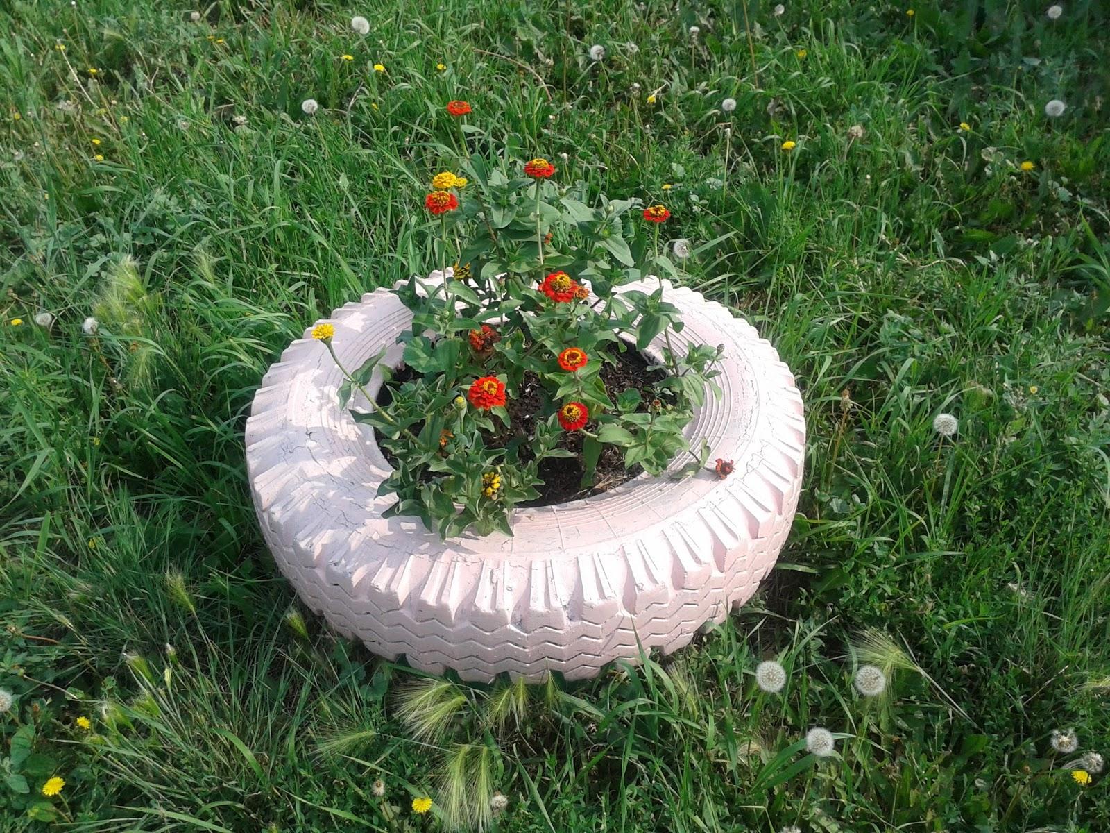 Клумбы цветов из подручных материалов фото
