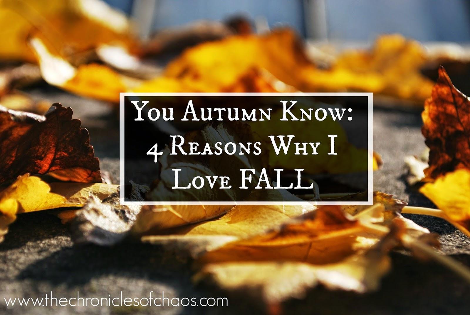 autumn; fall; leaves;
