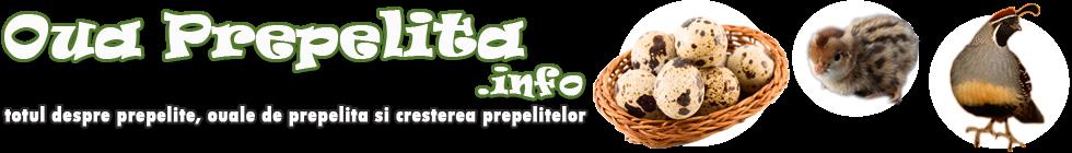 Despre prepelite, oua de prepelita, crestere prepelite