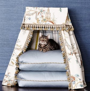 Traditional Home Magazine, Rachael Ray, cat beds, Patrick Lonn