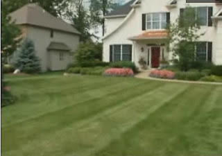 Home channel tv blog - Autumn lawn care advice ...