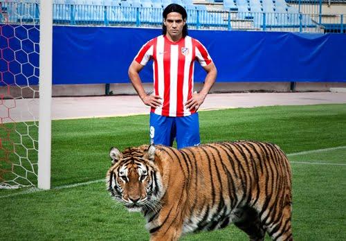 el tigre Falcao