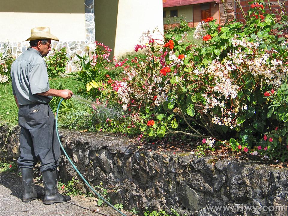 Estudios de espa ol feliz d a del trabajo for Trabajo jardinero