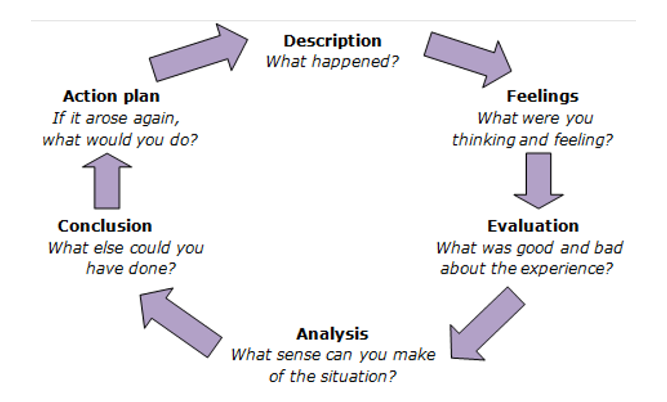 freedom to comment reflection 2 essay Outcomes and self-reflective learning abilities development such as essay drafts  students can be asked to comment on their learning and development at each.