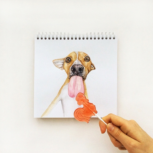 22-Sweet Tooth-Valerie-Susik-Валерия-Суслопарова-Cats-and-Dogs-Interactive-Animal-Drawings-www-designstack-co