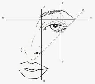 Resultado de imagen de estudio de cejas
