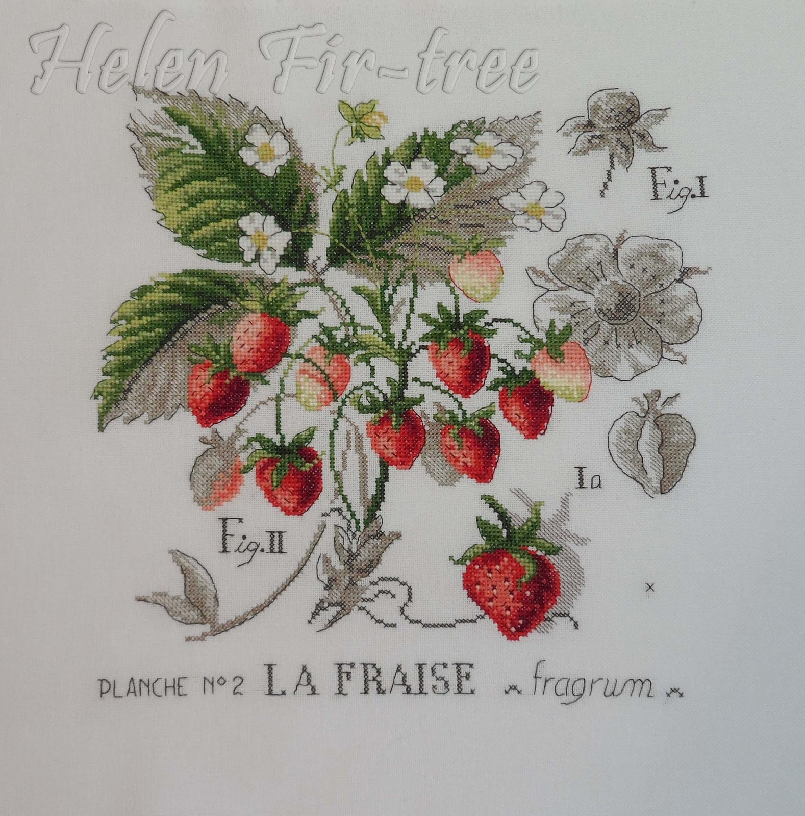 Helen Fir-tree вышивка крестом земляника counted cross stitch strawberry