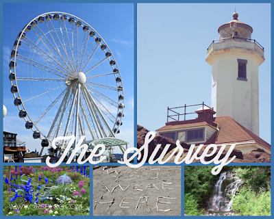 The Survey weekend recap The 3 Rs Blog