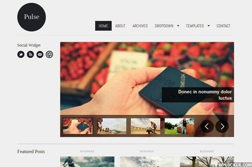 Pulse WpZoom Premium Wordpress Theme Version 1.3 free