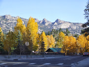 Beautiful Aspens and Rocky Mts