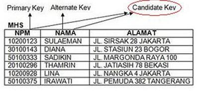 Jenis-Jenis Kunci Dalam Dalam Relation Database
