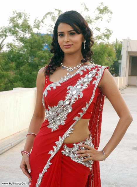 Meenakshi+Dixit+in+Saree+(5)