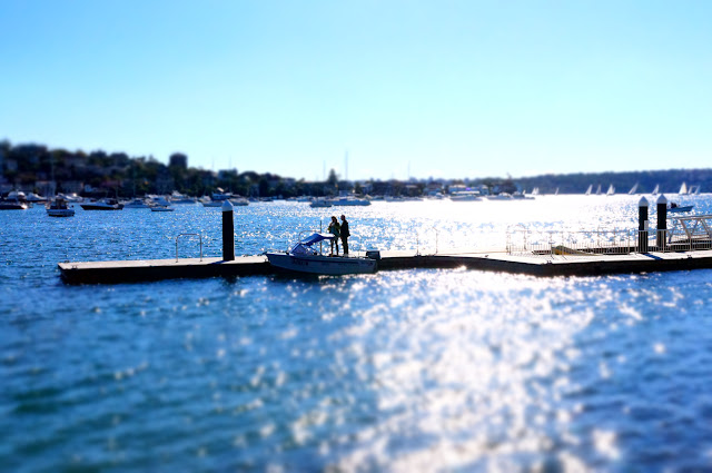 Photo of a small boat moored on a jetty in Rose Bay