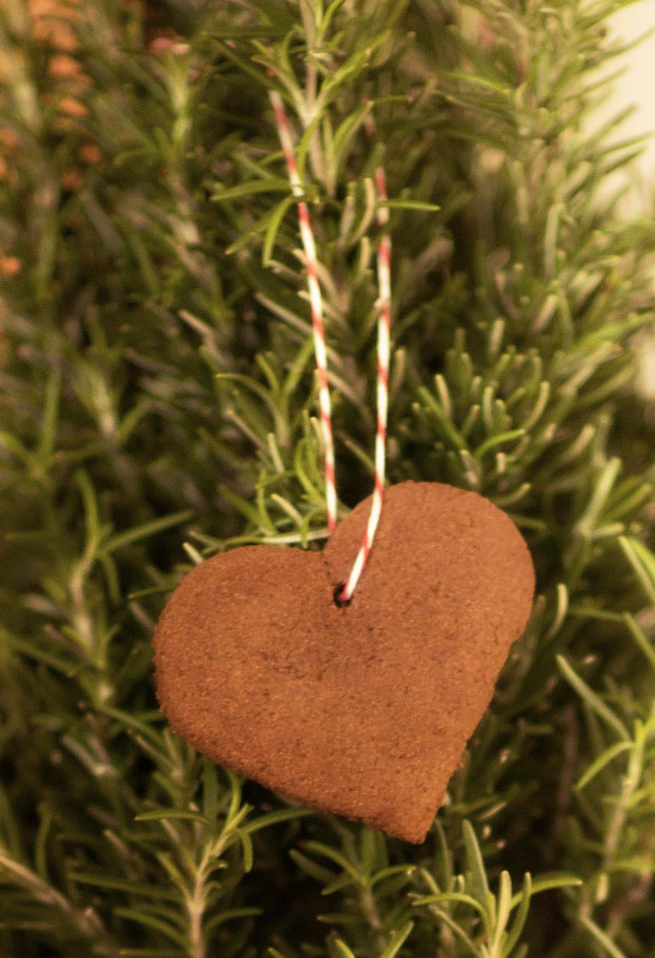 Apple Cinnamon Ornament Craft