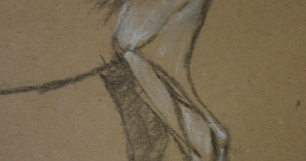 Art Stuff: Goat Leg Anatomy