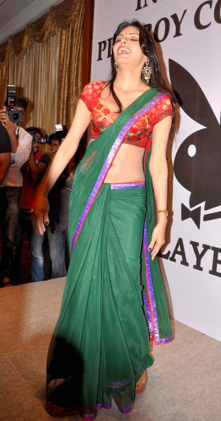 Sherlyn Chopra hottest belly pics hd photos