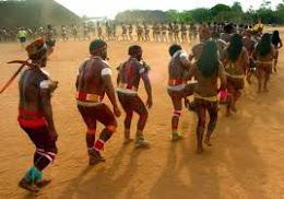 O Tupi-guarani não é uma língua, mas um tronco étnico.