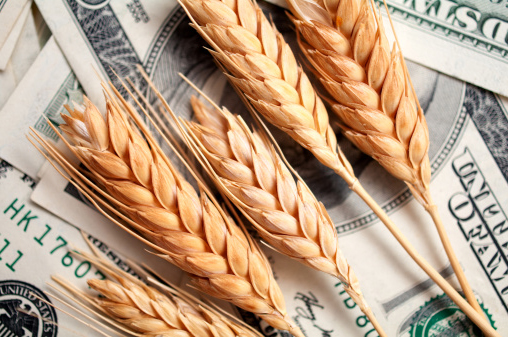 A global race for grain trading power is putting more of the world's vital cereals in the hands of fewer companies, with a string of recent acquisitions raising fears that consumers will pay even more for their food, while farmers are squeezed.