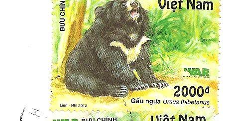 MY POSTCARD PAGE VIETNAM Water Buffalo