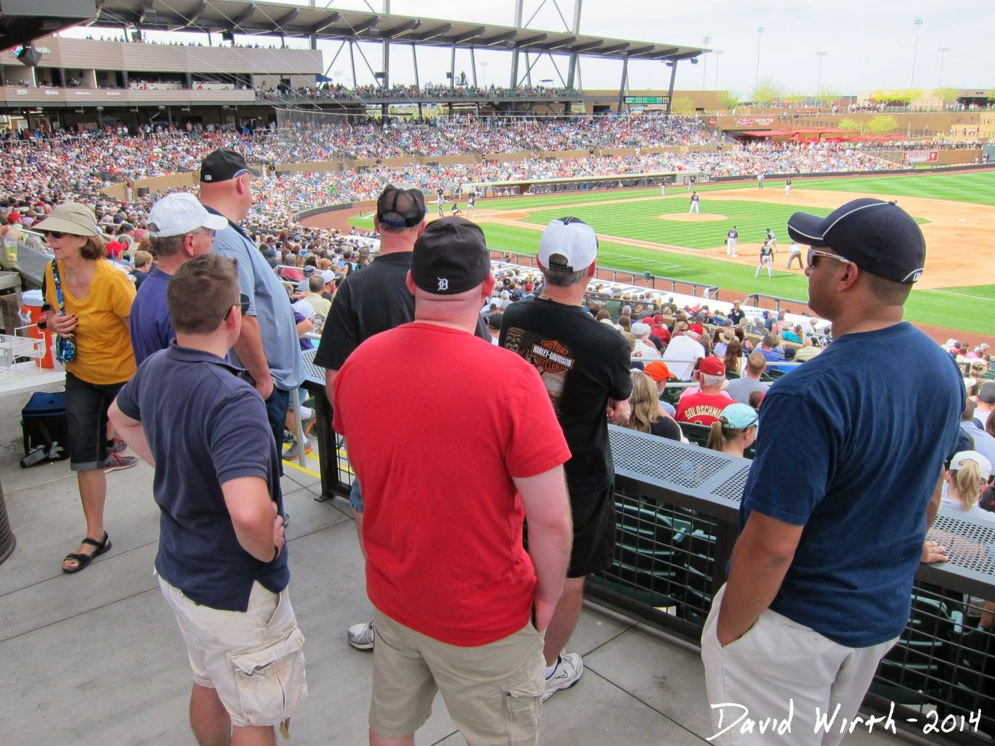 arizona spring training baseball