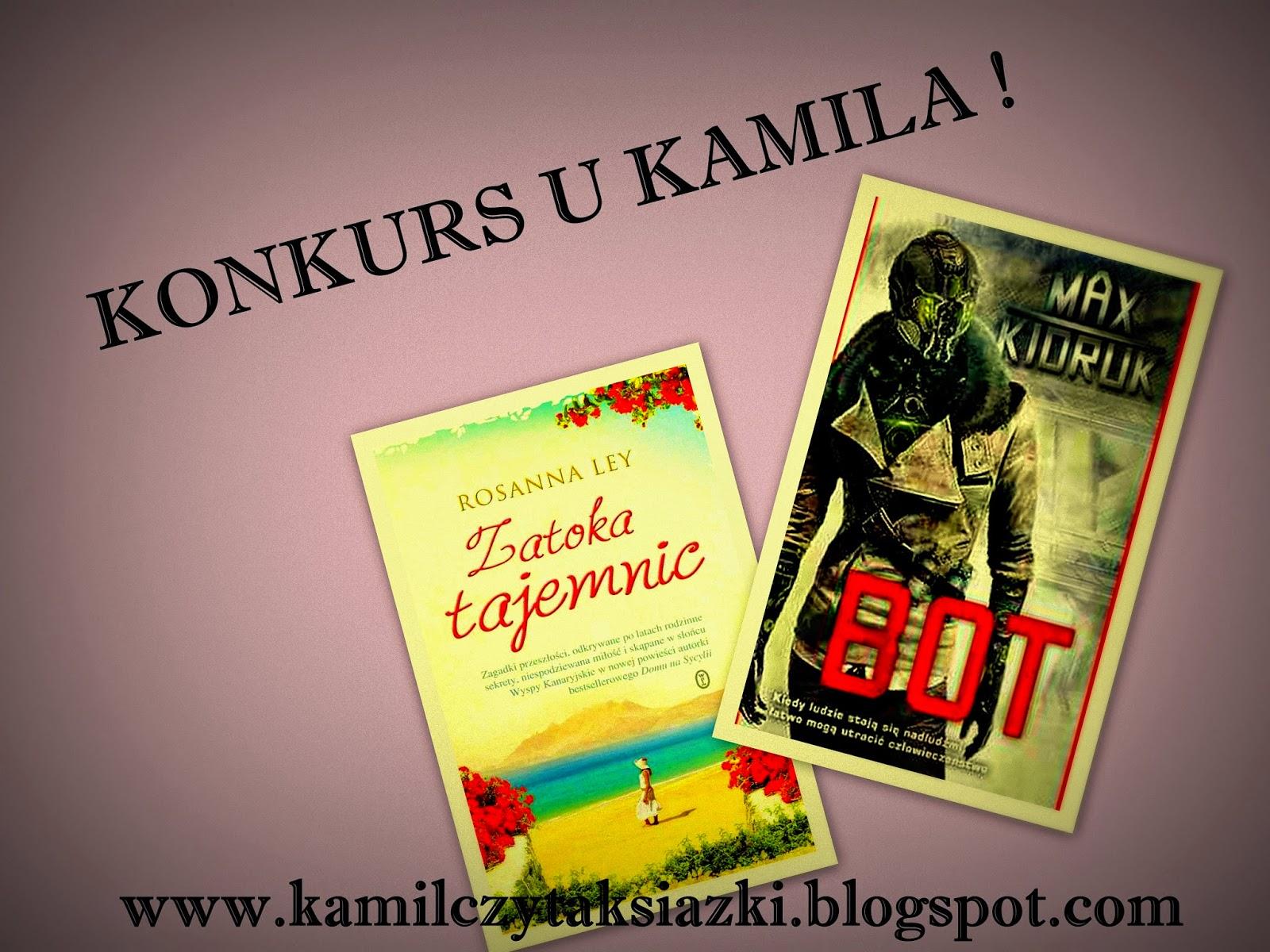 http://kamilczytaksiazki.blogspot.com/2014/09/to-juz-po-roku-zatem-czas-na-konkurs.html