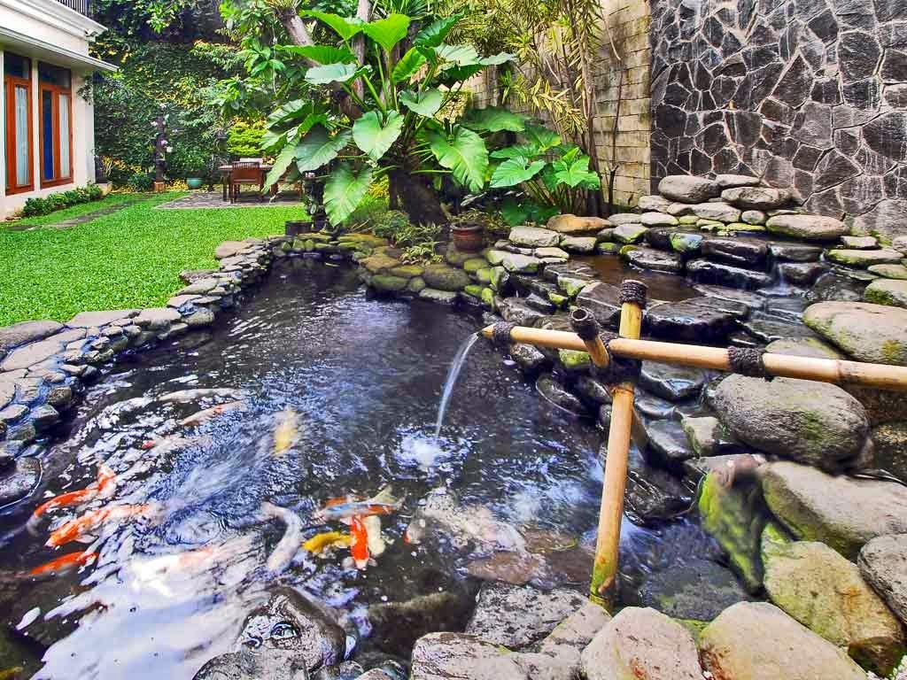 Model kolam ikan minimalis