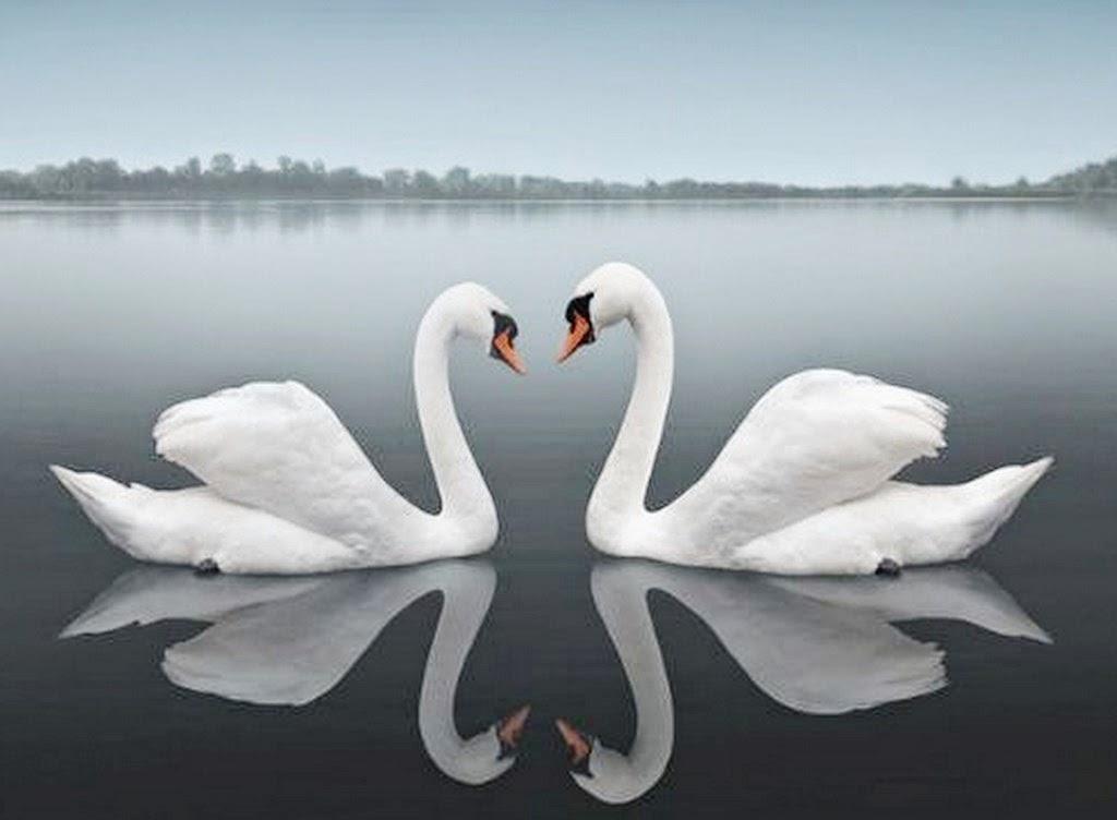 fotos-fe-paisajes-con-agua