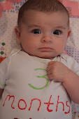 Hailey- 3 Months Old