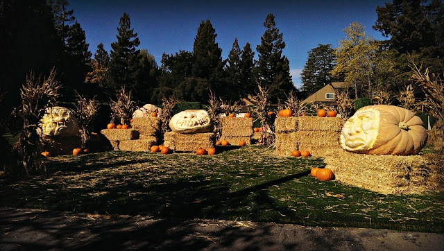 Marissa Mayer's giant Halloween pumpkins