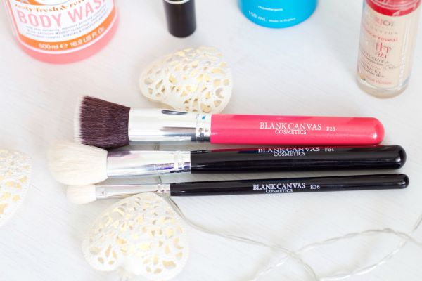 Blank Canvas brushes review