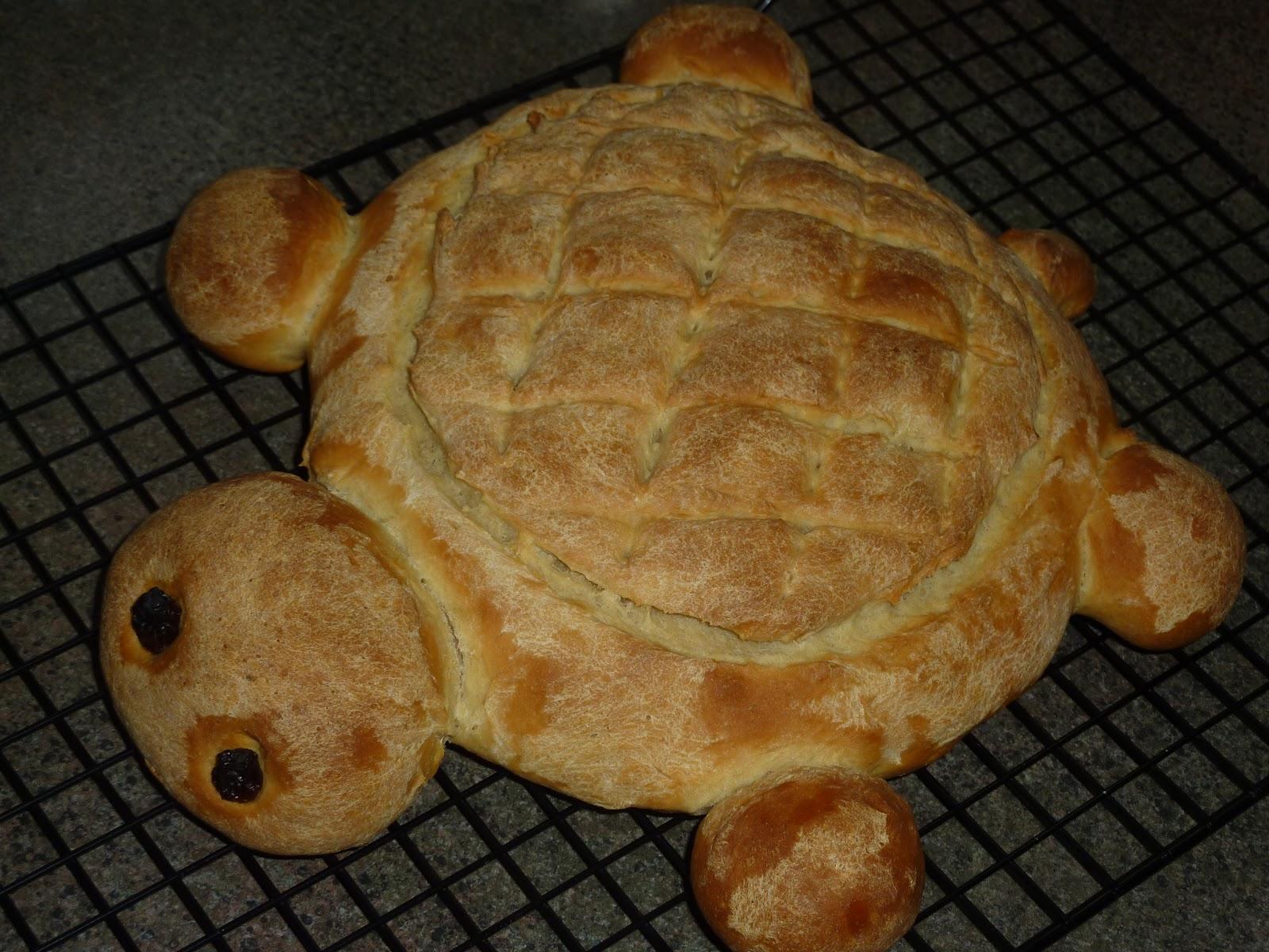 Aaha Oho: Whole Wheat Turtle Bread