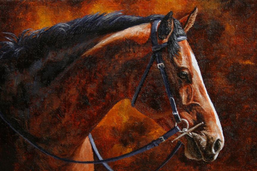 Horse Essays