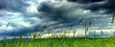 hava_durumu_ankara