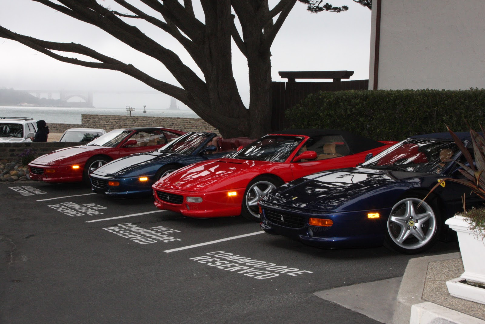 san francisco motorsports ferrari service bay area. Cars Review. Best American Auto & Cars Review