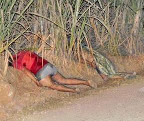 Ejecutan a tres personas en Omealca Veracruz