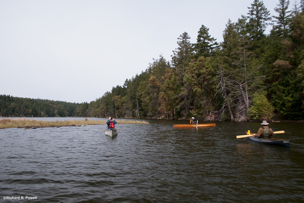 Vancouver Island River Fishing Regulations