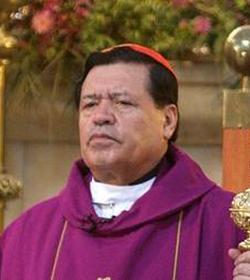Las 50 sombras del obispo Munilla Espaa EL MUNDO