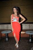 Surveen Chawla latest glamorous photos-thumbnail-13
