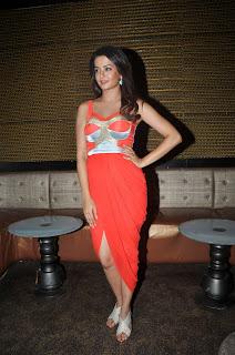 Surveen Chawla latest glam pics 012.jpg